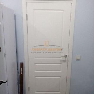 Фото межкомнатных дверей с эмалью
