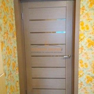 Фото межкомнатных дверей с экошпоном