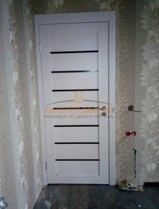 Фото межкомнатных дверей с экошпоном 1