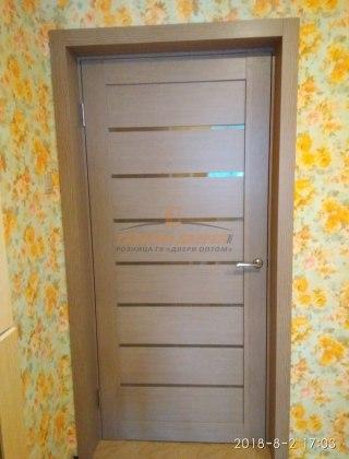 Фото межкомнатных дверей с экошпоном 3