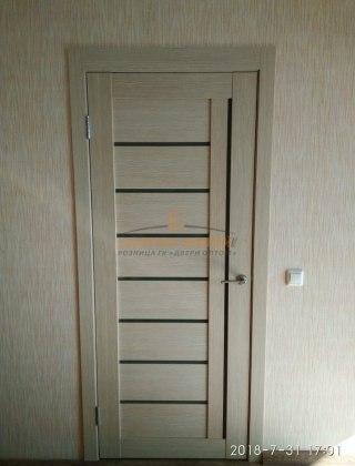 Фото межкомнатных дверей с экошпоном 12