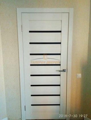 Фото межкомнатных дверей с экошпоном 13